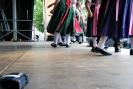 Fest der Kulturen 2013