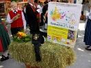 Umzug des Bezirksmusikfests in Rankweil 2014